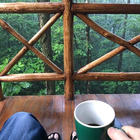 Tree Houses Hotel Costa Rica: photo0.jpg