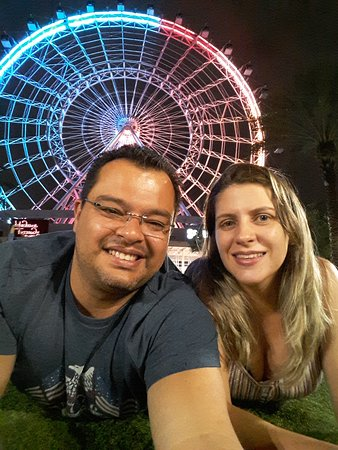 The Wheel at ICON Park: Foto no jardim frontal