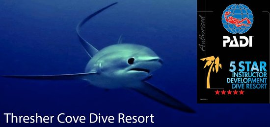 Malapascua Island, Philippines: Thresher Cove PADI 5 Star IDC Dive Resort