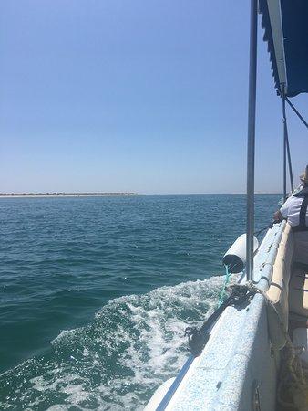 Sabino Boat Tours: Vista da Ria