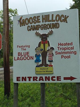Moose Hillock Campground صورة فوتوغرافية