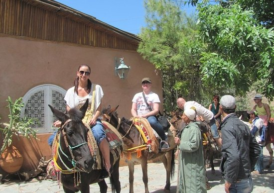 """Day Excursion  trek in Atlas to Ouirgane Valley and the Atlas Mountains"""