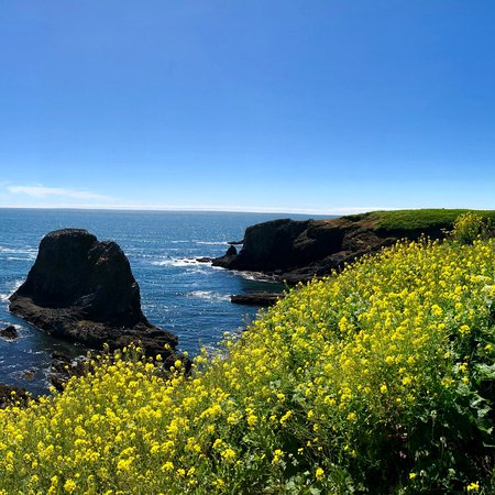 Фотография Yaquina Head Outstanding Natural Area