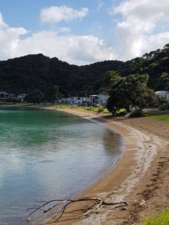 Coromandel Peninsula, Νέα Ζηλανδία: A beach on the way there.