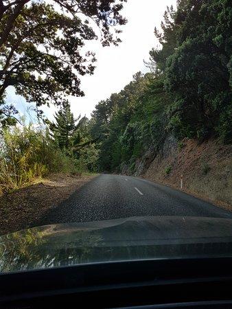 Coromandel Peninsula, Nova Zelândia: A road shot, before it turns to gravel.