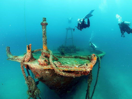 Cabo Excursions: Dive the shipwrecks of La Paz with Cabo-excursions.  Excellent guides and prices!