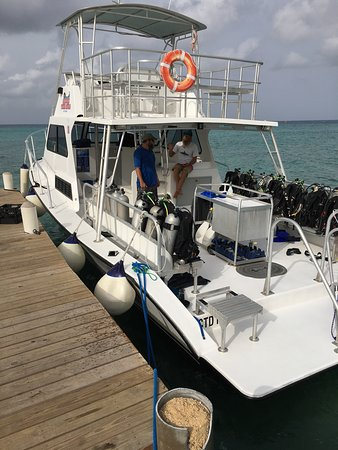 Cayman Turtle Divers: Our transportation to the dive sites.