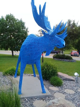 East Grand Forks, MN: The blue moose