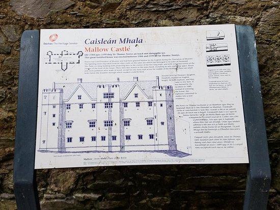 Mallow Castle: 20180610_085905_large.jpg