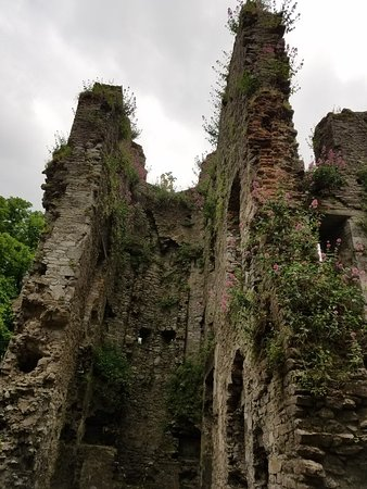 Mallow Castle: 20180610_085918_large.jpg