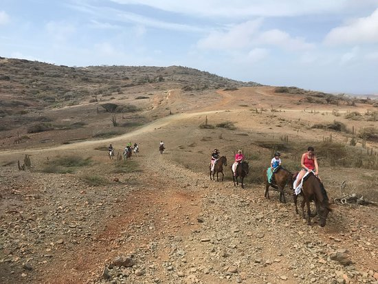 Rancho Loco: Thanks for choosing to ride with us! We welcome your feedback! #aruba #horsebackriding #beach