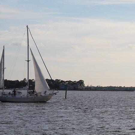 Sail Wild Hearts My Favorite Adventure In Orange Beach