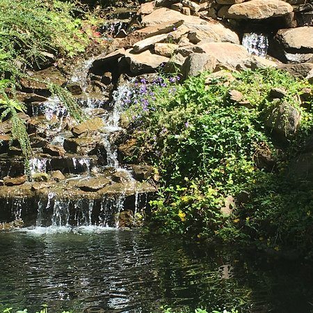 Ohme Gardens: photo3.jpg