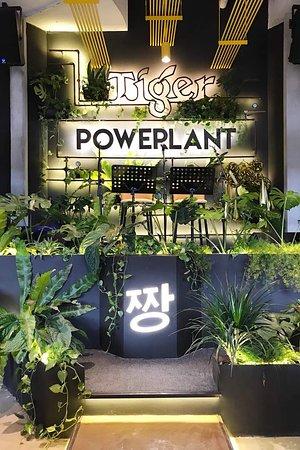 Powerplant Malaysia