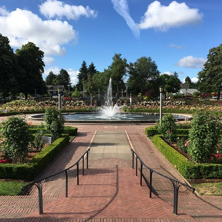 Gorgeous Morning At Peninsula Park 6 27 2018 Picture Of Peninsula Park And Rose Gardens Portland Tripadvisor