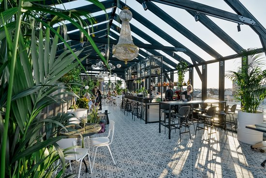 Herbārijs: Roof Top Terrace; Perfect place for a drink and a decent meal