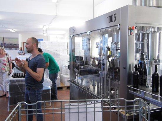 I Pastini: The bottling machine