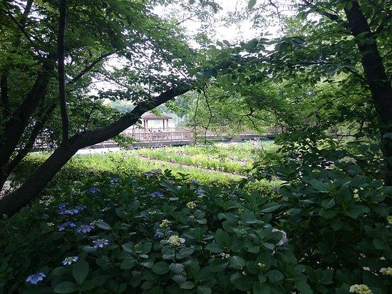 Misaki Suihen Park