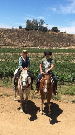 Temecula Wine Country Horseback Riding 2020 All You Need