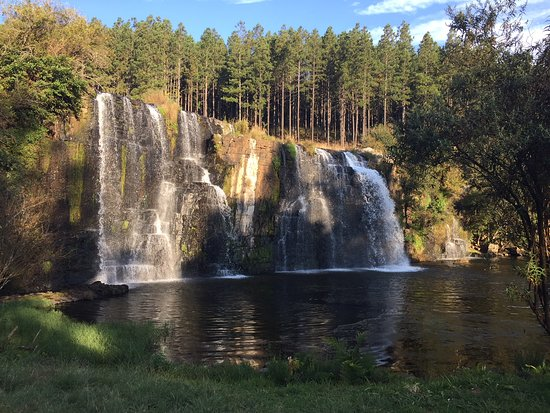 Forest Falls Nature Walk