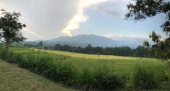 Beautiful serene location