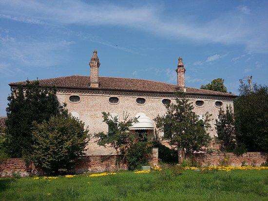 Arqua Polesine, İtalya: Scattata a fine settembre, quando crescono i crochi gialli spontanei.