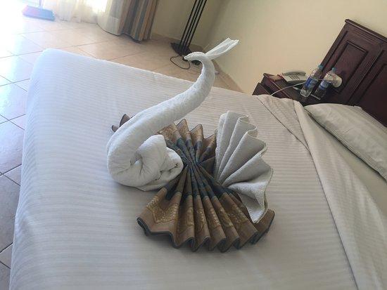 Bilde fra The Three Corners Sunny Beach Resort
