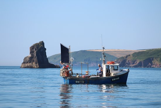 Devon Sea Safari: Fishing vessel from Brixham