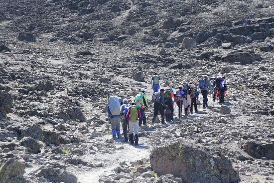 Intrepid Explorer Tanzania: Mount Kilimanjaro Trekking