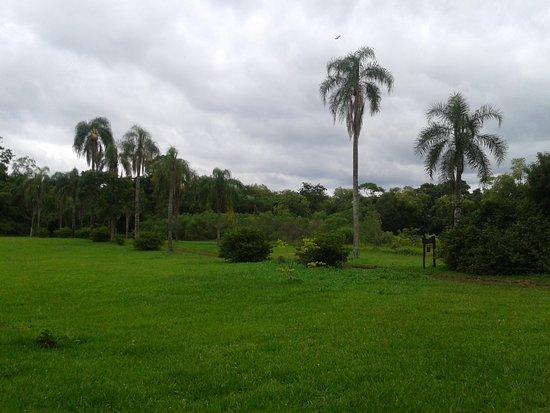 San Ignacio, Argentina: Ingreso a la reserva