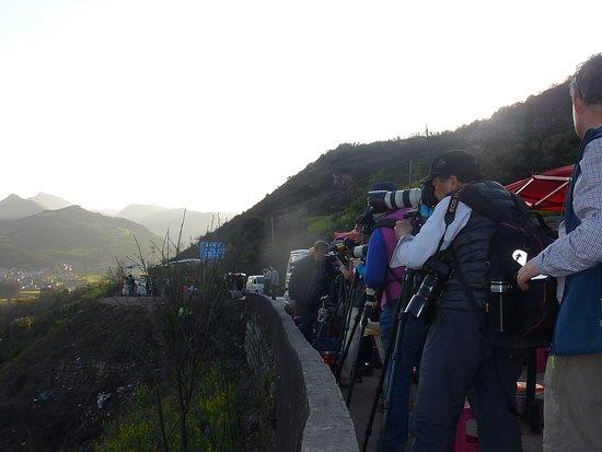 Luoping County, Kina: 田螺の田んぼを見下ろせる場所はカメラマンがいっぱいでした。