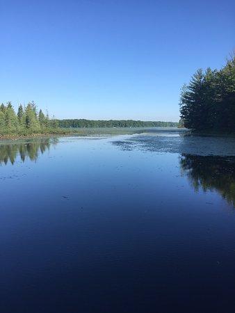 Lake 'N Pines Lodge: photo0.jpg