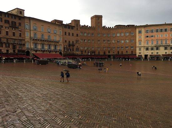 Piazza del Campo: La place