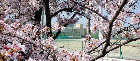Γιοκαϊτσι, Ιαπωνία: 2018年3月31日:四日市高校
