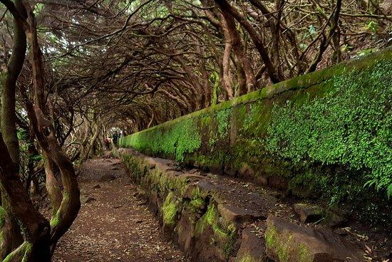 25 Fontes and Cascada da Risco照片