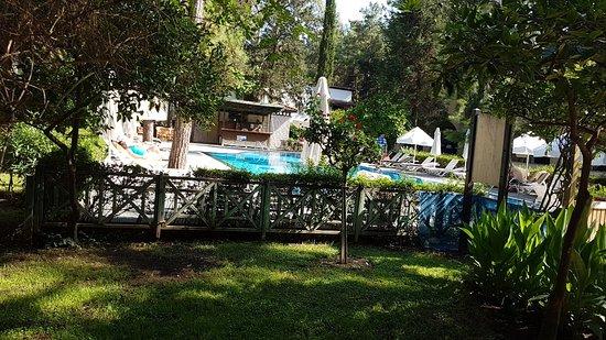 Bilde fra Champion Holiday Village