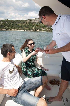 Royal Dalmatia: Professional Service