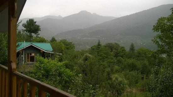 Bilde fra Tree House Cottages