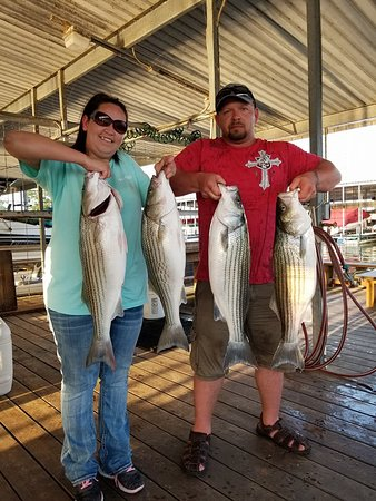 Lake Texoma Striper Guide: 4 Nice Summer Striper from Lake Texoma