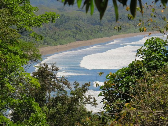 TikiVillas Rainforest Lodge: Beach at 400 metres from hotel