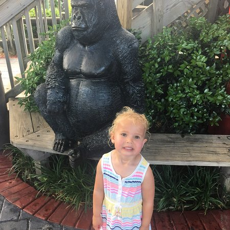 Foto de Coconut Creek Family Fun Park