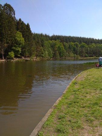 Mallards Pike Lake: IMG_20180520_131234_large.jpg