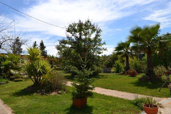 El Charco: Jardineria