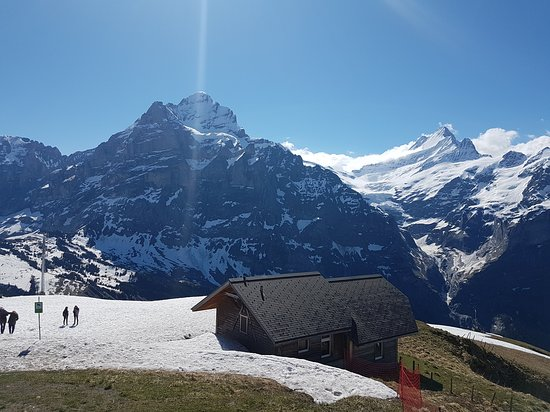 Mt First Admission in Grindelwald: First
