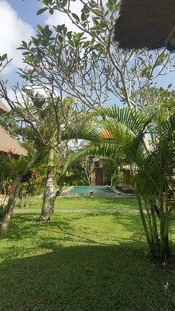 Bilde fra Chili Cottage