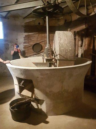 Museo della civilta contadina di Montefoscoli