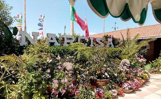 Hotel I 4 Assi: Нарчиза - пляж в Виареджо