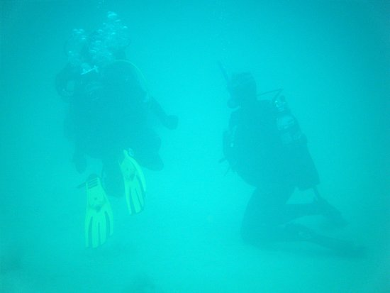 Lanzarote Non Stop Divers: watching and learning