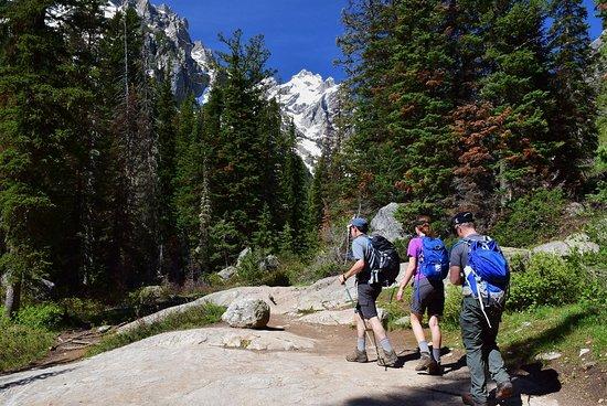 Cascade Canyon Trail: Cascade Canyon is a beautiful dayhike trail