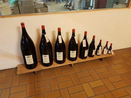 Cantina Zeni e Museo del Vino: wine display